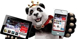 Online gokken - Alle Nederlandse casino spellen en gokkasten online.